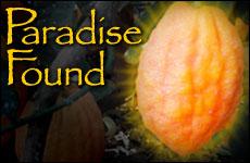 Paradise_Found_(medium)_(english)